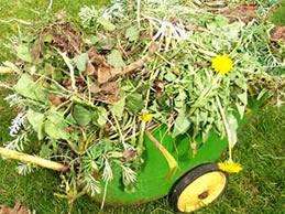 garden waste into organic compost